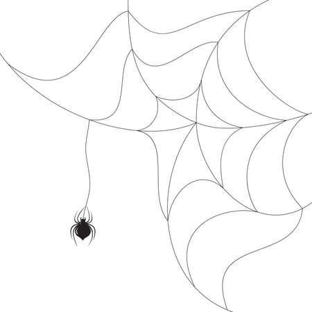 Vector araignée tissant une toile sur fond blanc.