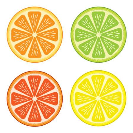 segment: Set of citrus fruit - lemon, orange, grapefruit and lime.