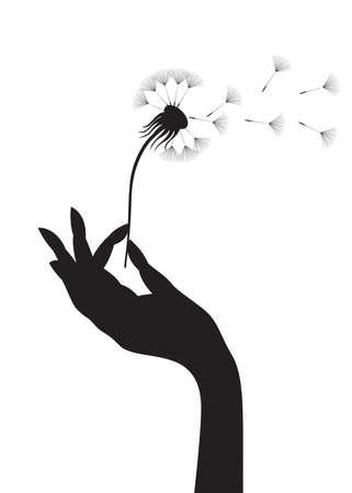 viento soplando: Silueta de una mano femenina celebraci�n de diente de Le�n. ilustraci�n.  Vectores