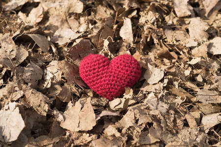 Red crocheted heart in dried foliage on a sunny spring day