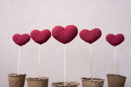 Crocheted hearts in peat glasses Stock Photo