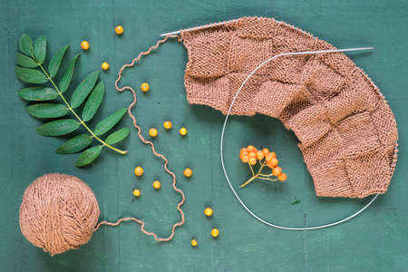 단풍과 녹색 배경에 ashberries 뜨개질 오버 헤드 샷. 스톡 콘텐츠