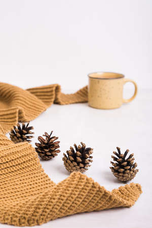 Knitted shawl, cup of coffee and cones on white background