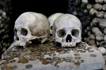 morbid: The human skulls on the coins
