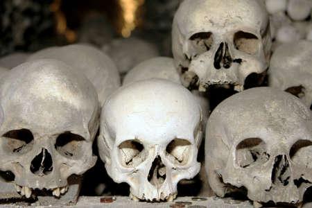 The human skulls in the bone grave photo