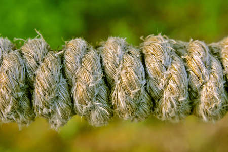 veiny: Old rope fibers impregnated with sea water and discolored Stock Photo