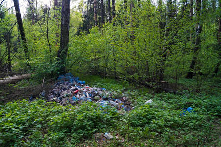 scrapheap: garbage in the forest and dead trees near it Stock Photo