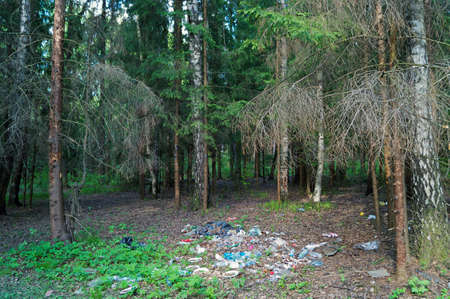 waste products: garbage in the forest and dead trees near it Stock Photo