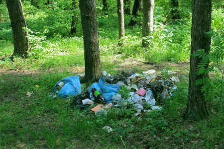 A pile of garbage in the forest Banco de Imagens