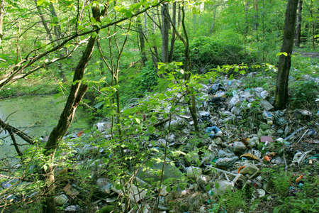 A pile of garbage in the forest near the lake