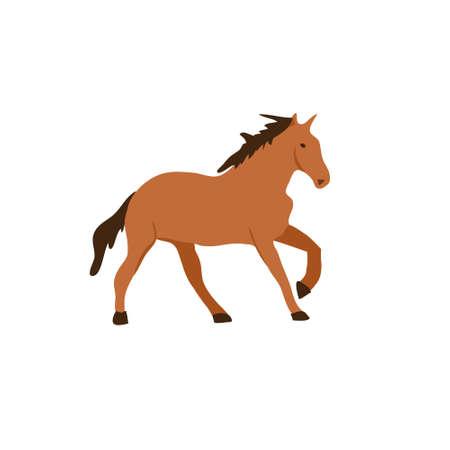 Horse flat vector illustration. Elegant brown stallion isolated on white background. Cartoon East Prussian racehorse. Graceful chestnut color mare. Beautiful hoofed mammal, stud farm animal.