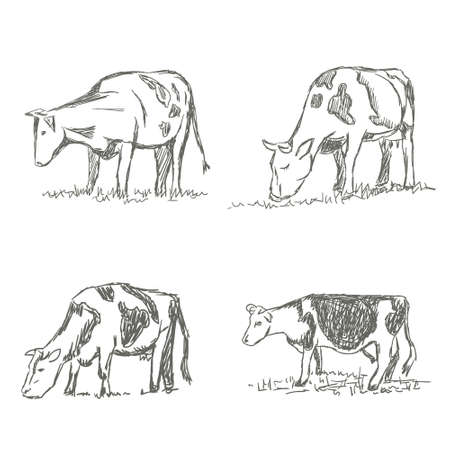 Cows grazing on meadow. Hand drawn illustration. Set 向量圖像