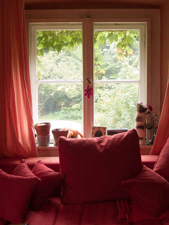 Red window with red sofa and curtains Stock Photo
