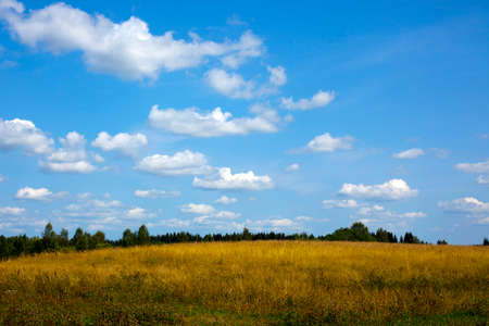 そこは白い雲と青い空の下、緑の草原