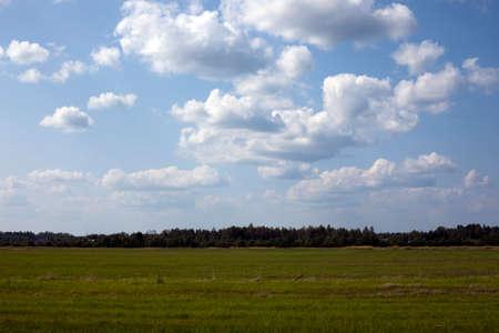 白い雲と青い空の下、緑の草原があります。 写真素材