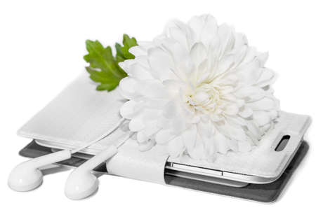 White flower of chrysanthemum, phone and earphones isolated on white background, music concept, good mood, romantic mood concept, spring mood, relax and harmony, in white and green colors