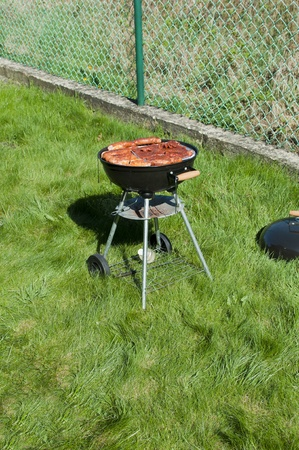 barbeque standing on green grass photo