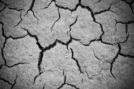 b w: Dry soil background b w - vignette  Stock Photo