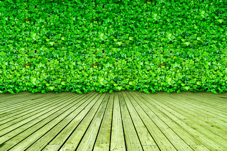 Interior Design with natural, green, leaf wallpaper photo
