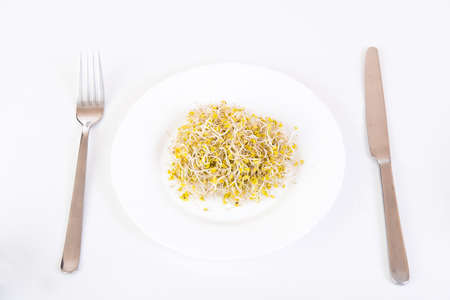 sprouts on a plate and cutlery on white background photo