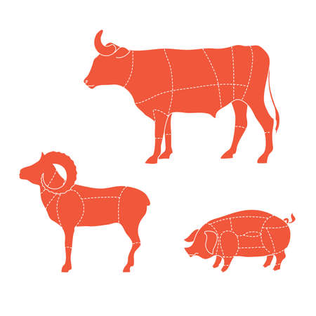 Template - how to cut meat cows, ram, pigs Vector