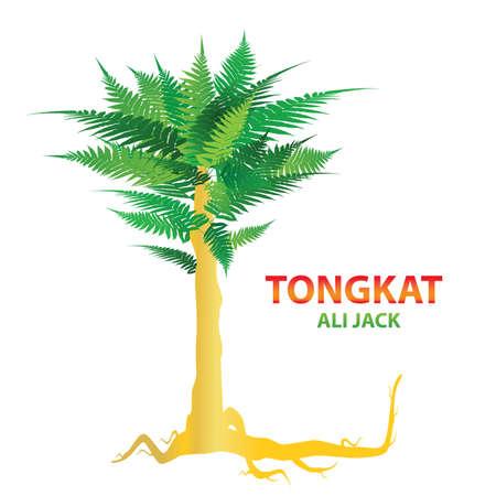 トンカットアリ - 自然の性的刺激