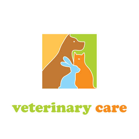 Template to sign the veterinary care. 向量圖像