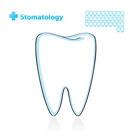 tooth root: Dental background with tooth. Vector Illustration.