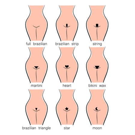Conception Bikini - types de cire femmes Vecteurs