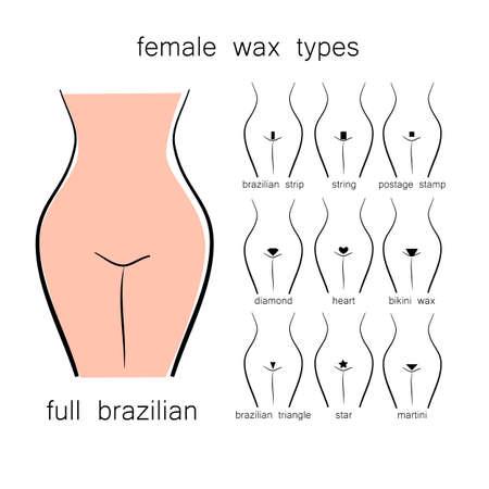 Bikini design - female wax types 일러스트