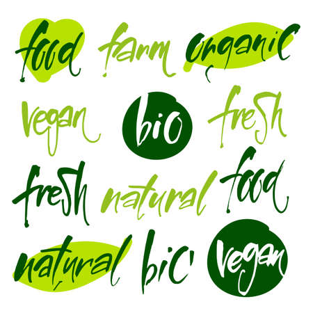 food: Vector illustration, food design. Handwritten lettering for restaurant, cafe menu. Calligraphic and typographic collection. Vegan, Bio, Ecology, Organic and icons, labels, tags. Illustration
