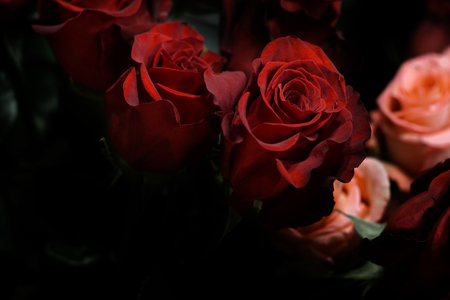 Bouquet of red roses in a flower shop. Out of focus floral background. Close up of flower arrangement in a vase. Stock fotó