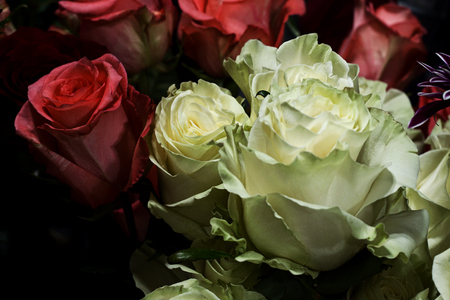 Bouquet of red and white roses in a flower shop. Close up of flower arrangement in a vase.