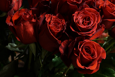 Bouquet of red roses in a flower shop. Close up of flower arrangement in a vase.