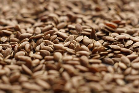 Raw organic flaxseeds. Close up of Linum usitatissimum seeds. Super seeds.  Selective focus. Copy space.   Healthy food concept.