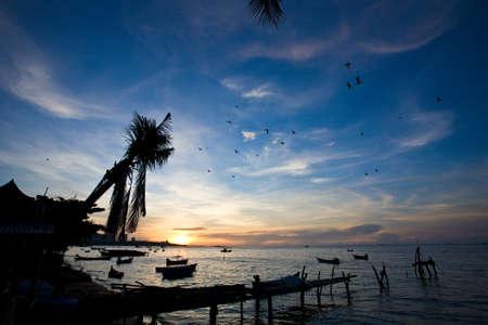 Pattaya beach of Thailand Stock Photo - 8046477