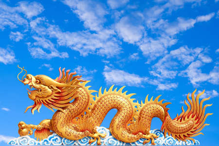 dragon: dragon with cloudy sky background