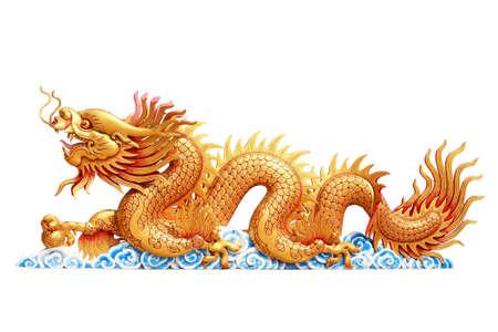 Dragon with white background Standard-Bild