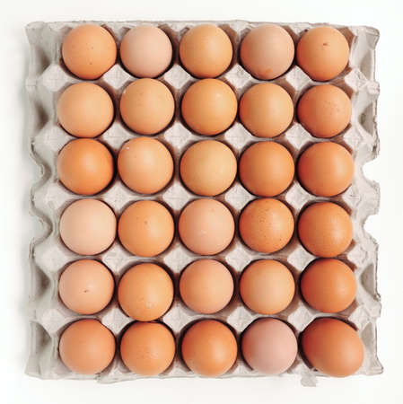 food safety: Eggs in Carton