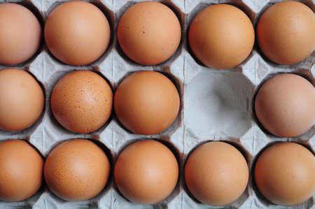 Eggs in Carton Stock Photo - 11449564