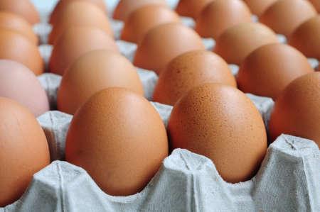 Eggs in Carton Stock Photo - 11449554