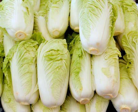 nappa: nappa cabbage in Market