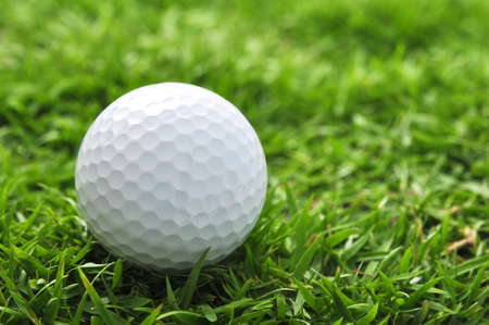 golf ball and grass Stock Photo - 14642959