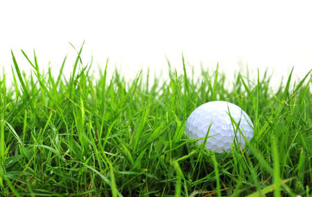 golf ball: golf ball in the rough Stock Photo