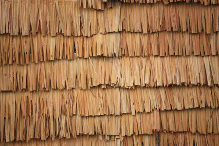 thatch roof Stock Photo - 14643004