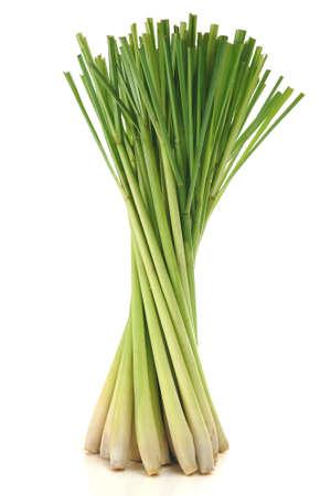 lemongrass: Lemon grass on white background Stock Photo