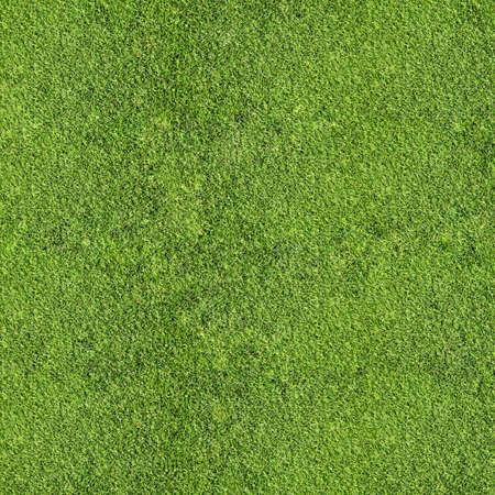 soccer field: grass texture