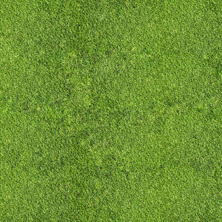 cancha de futbol: hierba textura