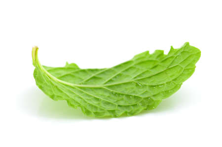 Mint leaf Stock Photo