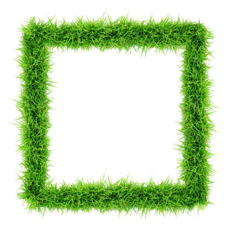 grass frame top view on white background Stock Photo
